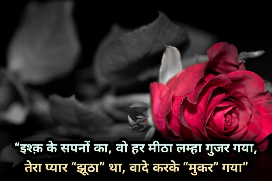 Fake Love Quotes In Hindi, Best Fake Love Shayari, Status, Quotes images, dp (3)